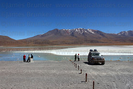 Tourists watching flamingos feeding at Laguna Hedionda , Cerro Cañapa volcano in background , North Lipez region , Bolivia