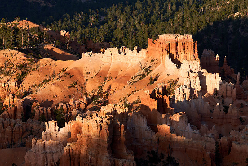 Bryce Shadows