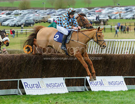 BRUNSWICK GOLD (Stuart Robinson) - Race 5 - 9YO and over Conditions - The Cottesmore Point-to-point 26/2