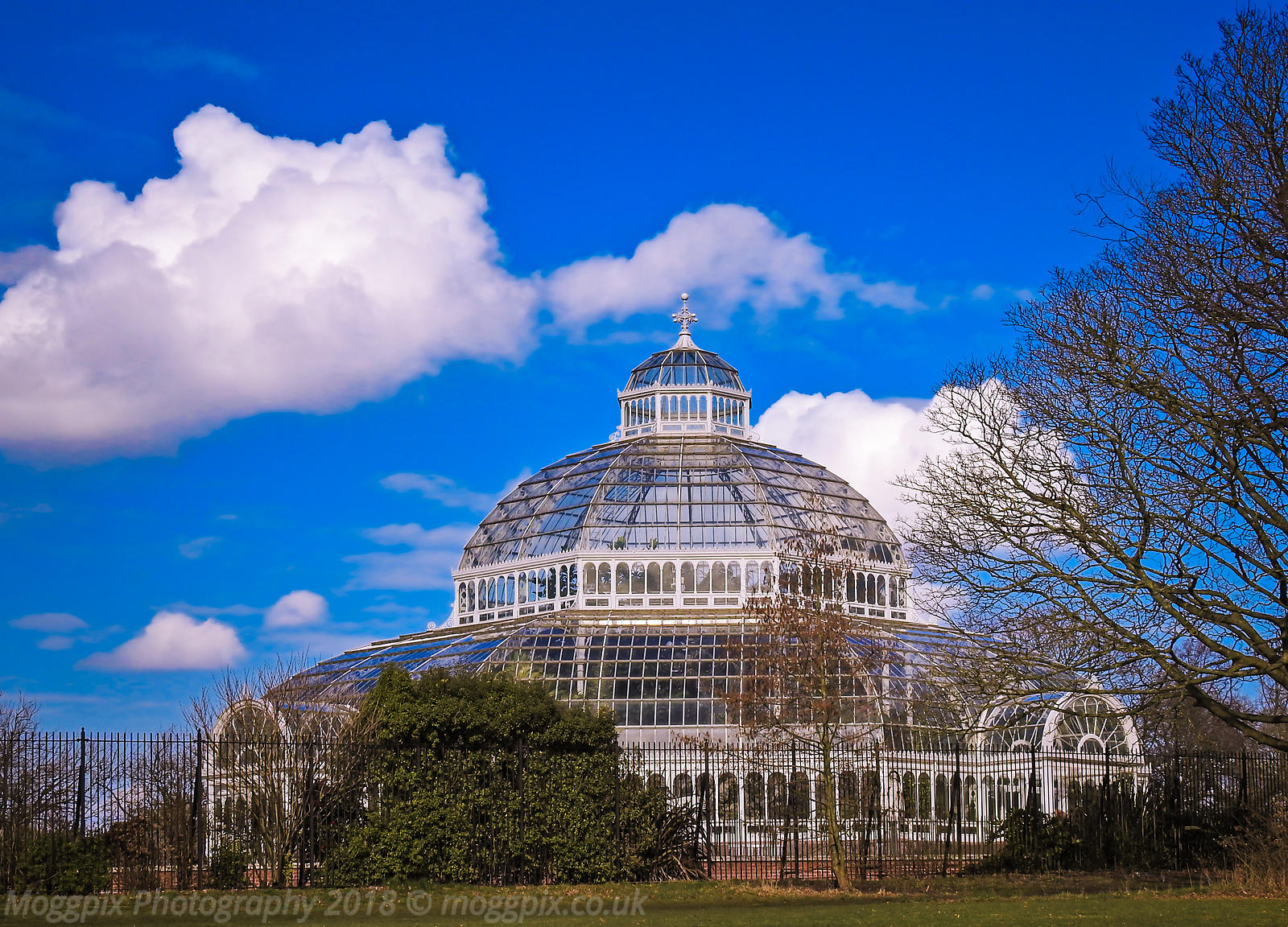 Early Spring at the Palm House