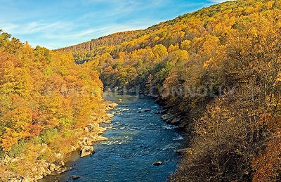 Youghiogheny River In Fall 2