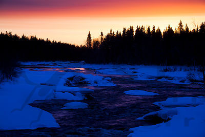 Morning light in Vikaköngäs Rapids