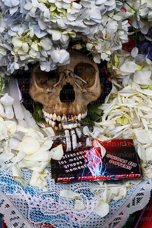 Close up of skull wearing crown of flower petals with promotional inauguration party leaflet, Ñatitas festival, La Paz, Bolivia