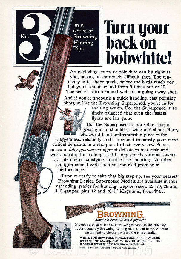 Advert for Browning rifles using Bobwhite Quail a quarry species to advertise