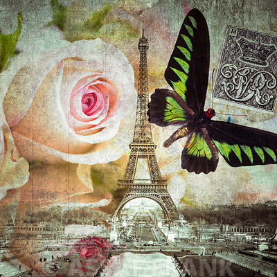 Eiffel tower with butterfly and roses overlay