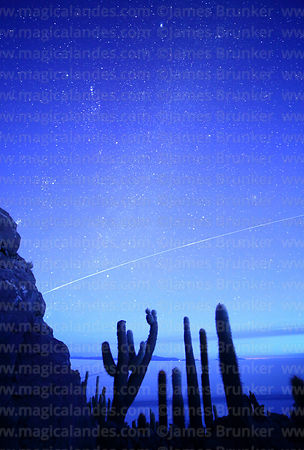 International Space Station passing above Echinopsis atacamensis (pasacana subspecies) cacti before dawn, Incahuasi Island, Salar de Uyuni, Bolivia
