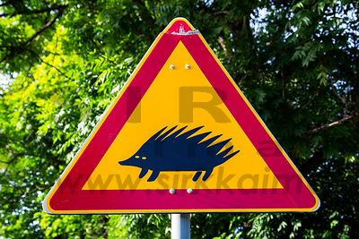 Sign is warning about Hedgehogs crossing point