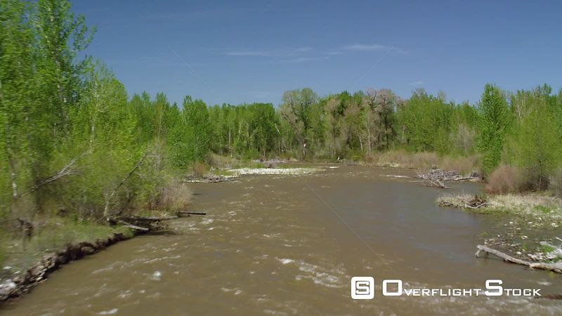 The Gallatin River winds through Cottonwood lined shores as it flows north towards Bozeman, Montana in early spring