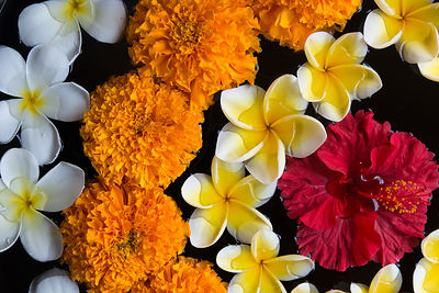 Flower Arrangement in Bali, Indonesia