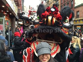 Lunar_New_Year_Dragon_Chinatown_NYC_4