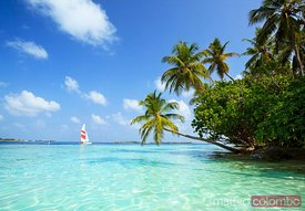 Sail boat on tropical sea, Maldives