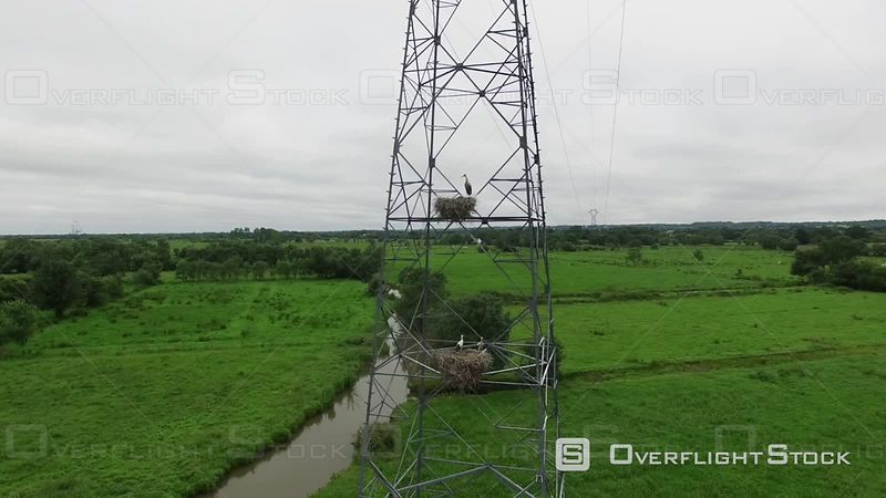 Aerial View of a Stork Nest on an Electrical Pylon at Loire River Estuary, Filmed by Drone, Nearby Saint-nazaire, France