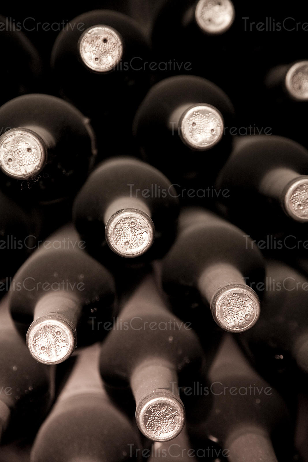 Dusty wine bottles ageing in a dark wine cellar