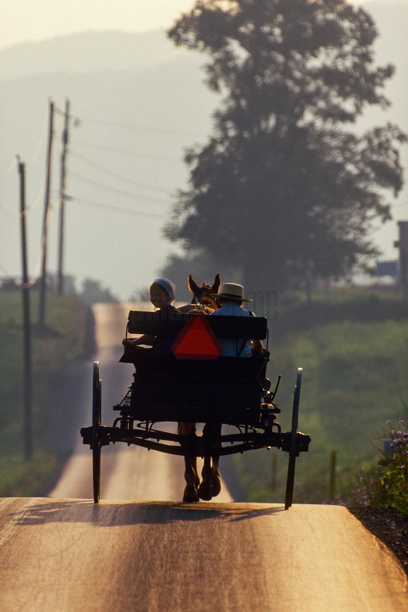 Two Children in Amish Buggy at Dusk