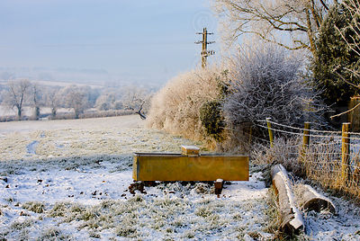 Cattle trough sits in frosty field