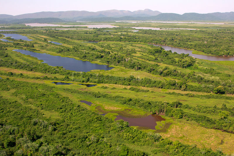Aerial view of the Pantanal, end of the dry season, area of the Rio Paraguay, Brazil. November 2012..
