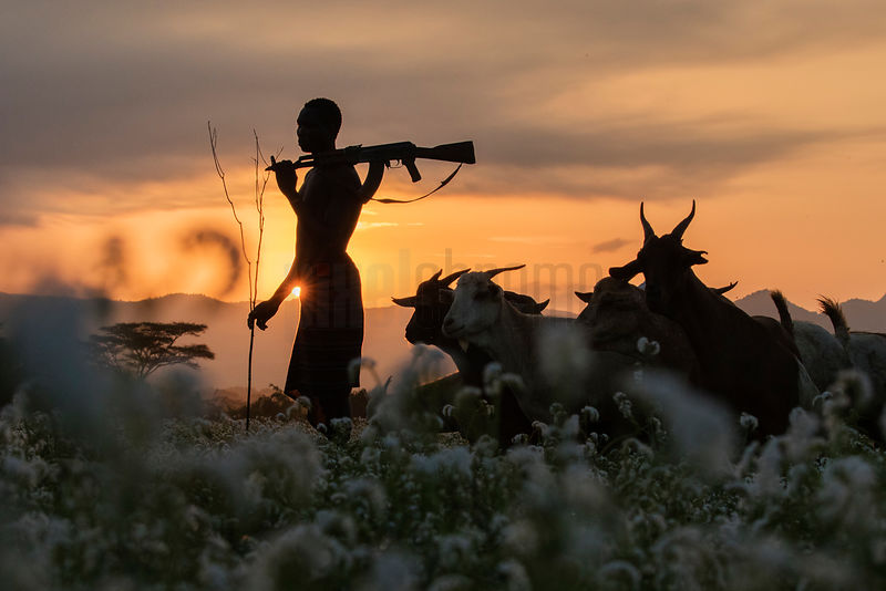Kara Tribesman Herding Goats at Sunrise