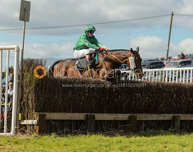 ARKOSE (William Thirby) - Novice Riders - Woodland Pytchley at Dingley 15/4