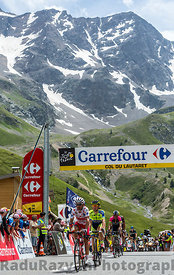 The Winner on Col du Lautaret - Tour de France 2014