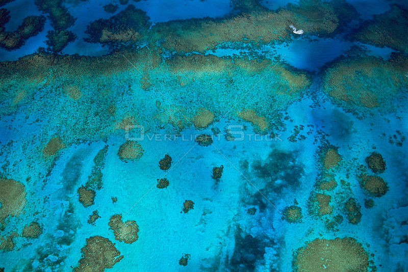 Aerial view of patch coral reefs off Walker's Cay, Bahamas