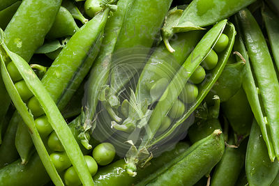 Green Peas in Pods