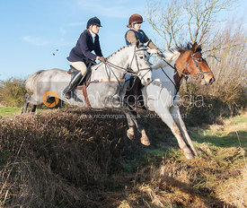 Jumping a hedge near the meet - The Quorn Hunt at Swan Lodge 16/12