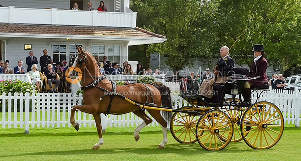 Her Majesty The Queen and Prince Philip, British Driving Society Summer Show, Guards Polo Club, Smiths Lawn
