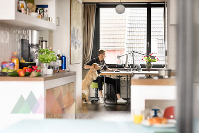 Man with dog working at desk at home