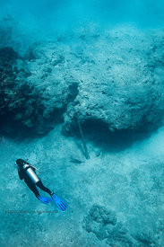 Scuba Diver swims by an old anchor on Columbia divesite, Cozumel, Mexico
