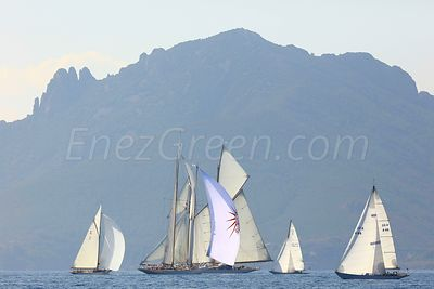 Cannes regattas -French Riviera