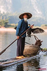 Old fisherman with cormorant, China