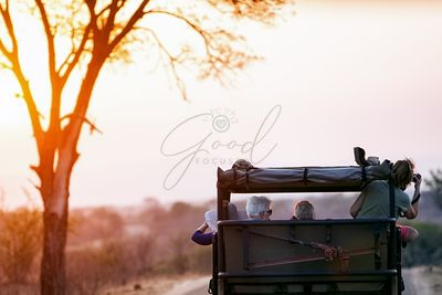 Photo Safari at Sunset in South Africa
