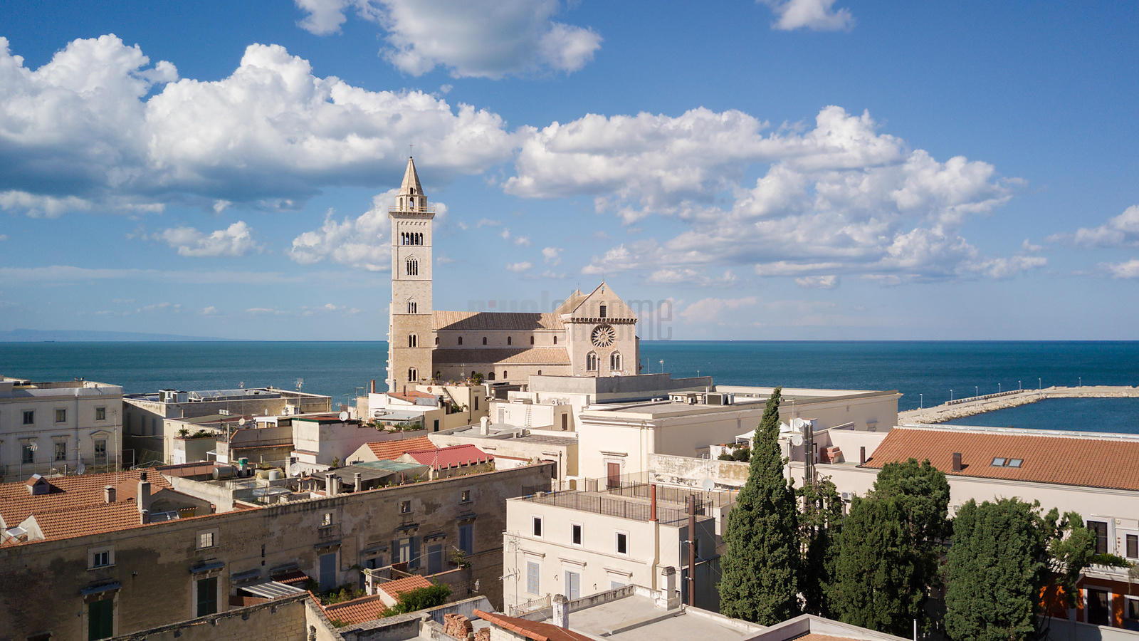 Aerial View of the Cathedral at Trani