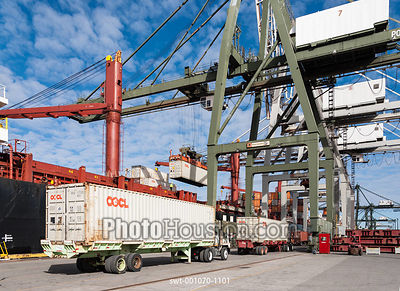 Container cranes at Barbours Cut Terminal