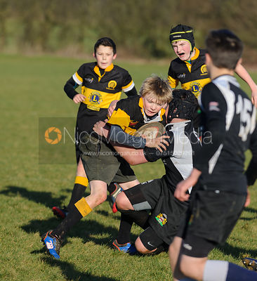 U13 XV vs. Market Harborough photos