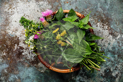 Meadow and Medicinal herbs for clean eating biohackers paleo diet