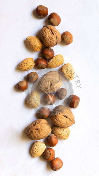 Scattered walnuts, hazelnuts and almonds in shells.