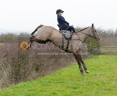 The Belvoir Hunt at Mount Pleasant 20/1 photos