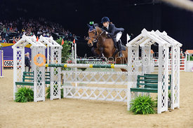 Alfie Bradstock and Dirty Gertie, Horse of the Year Show 2010