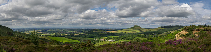 Tees plain and Roseberry Topping