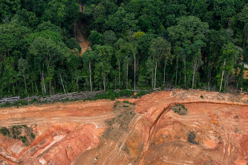 Aerial view of gold mining on edge of tropical rainforest, Arimu, Guyana, South America