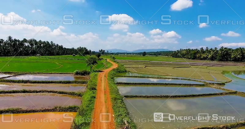 Aerial View of a Dirt in the Fields, Filmed by Drone, Sri Lanka