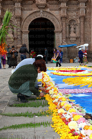 Woman decorating square in front of cathedral entrance with flowers before central mass, Virgen de la Candelaria festival, Puno, Peru