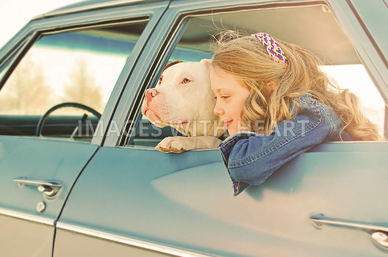 Dog and young girl Belaire Window