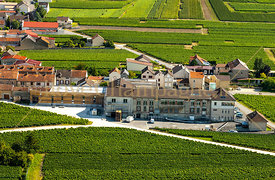 cooperative-mailly-grand-cru