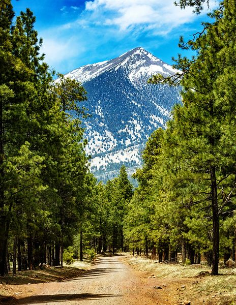 Flagstaff Arizona Road to Mountains