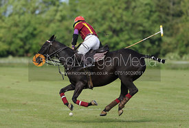 Sebastian Funes - Findlay Trophy polo 2015