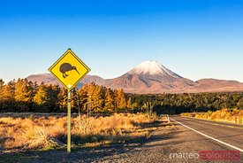 Kiwi sign on the road to mount Ngauruhoe, Tongariro, New Zealand