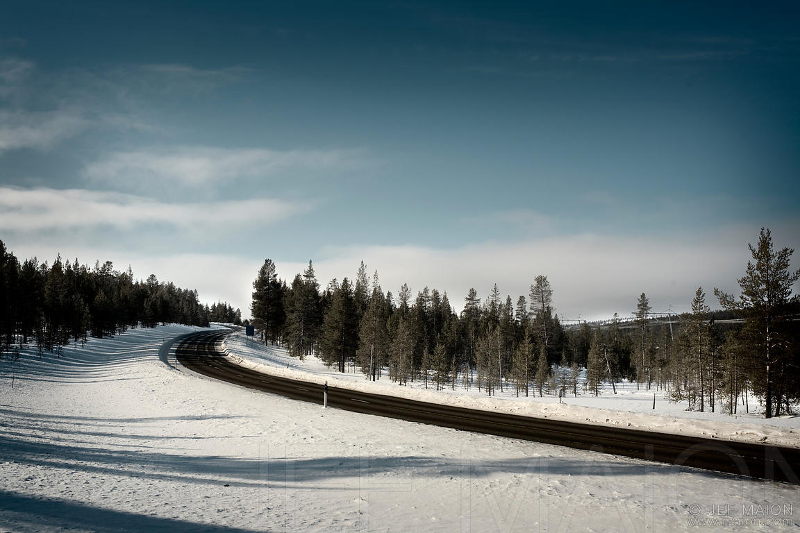 Highway curve in winter forest