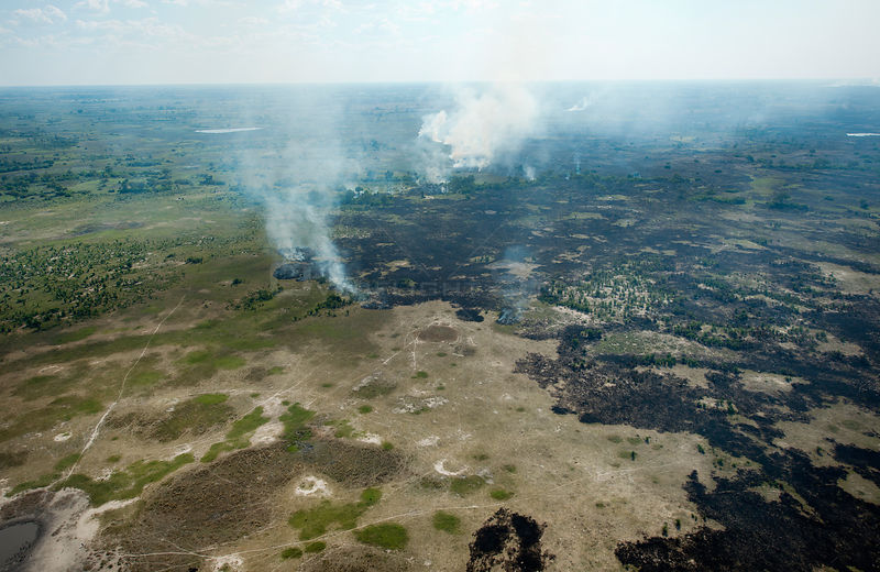Aerial view of natural wildfires in the Okavango Delta, UNESCO World Heritage Site,  Botswana. January 2018,